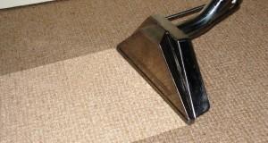 Carpet V5