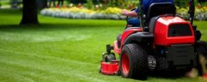 Lawnmower gardener