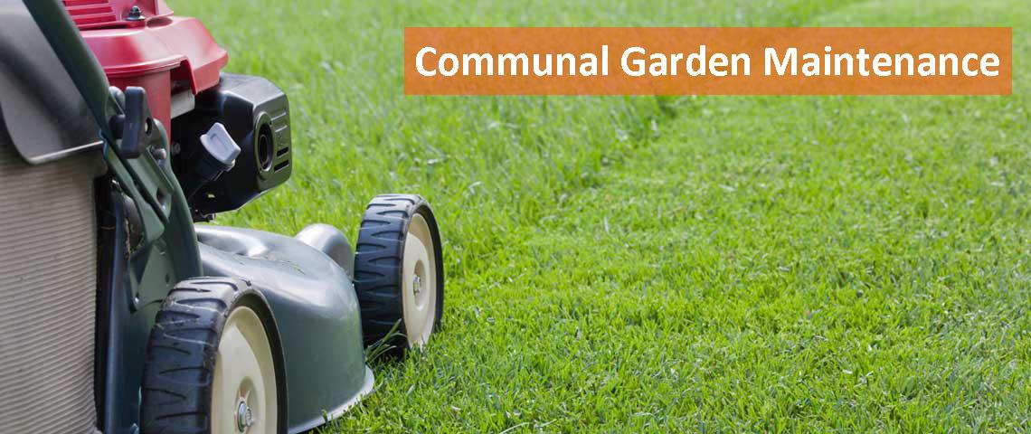 communal garden maintenance