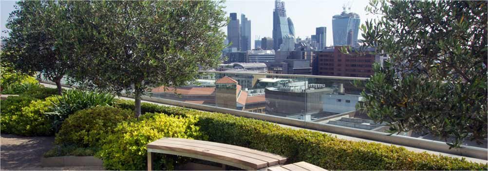 Roof garden maintenance protech property solutions for Garden maintenance london