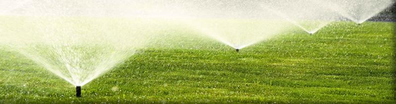 Garden water saving