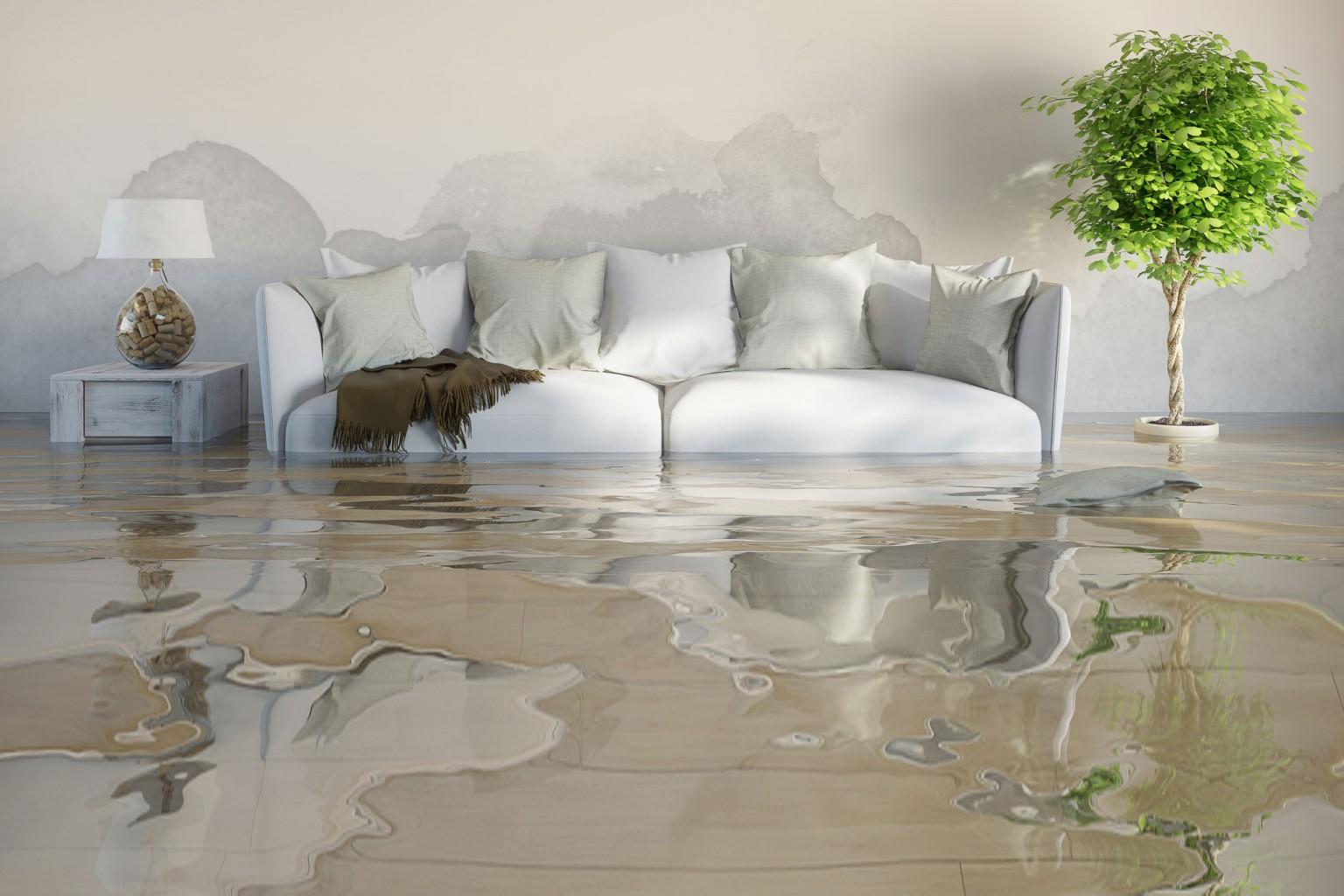 Property Floods